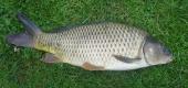 ribarstvo-04