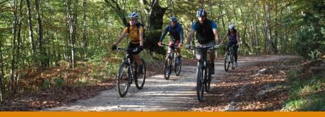 velosipedizam